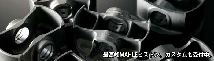 MahlePiston